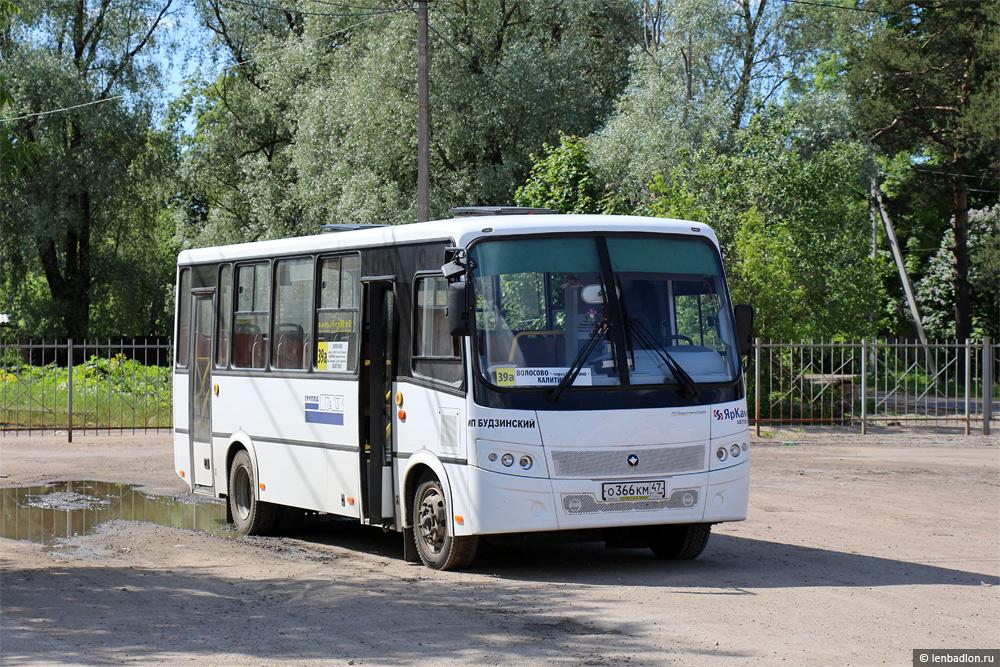 Фото автобуса в Волосово