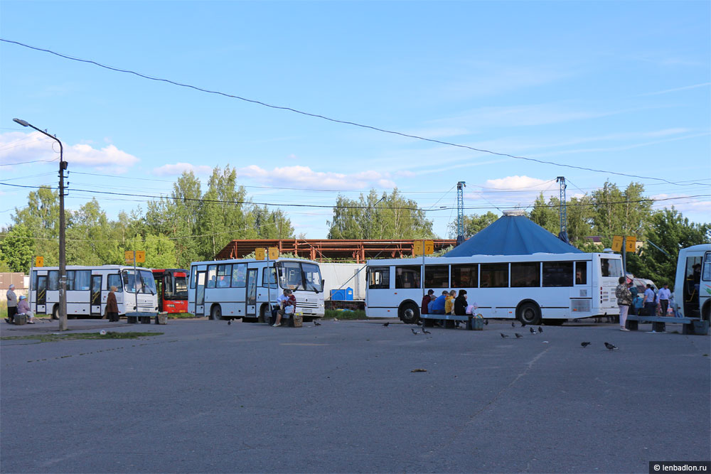 Фото автостанции в Кингисеппе