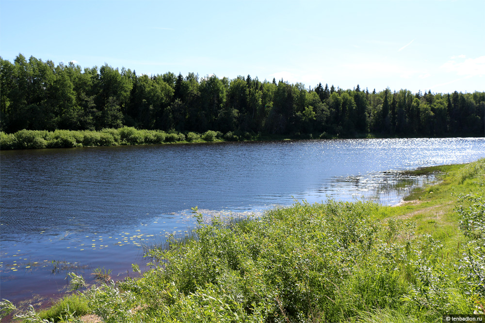 Фото реки Луга