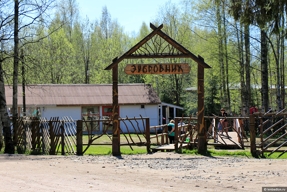 Зубровник в Токсово