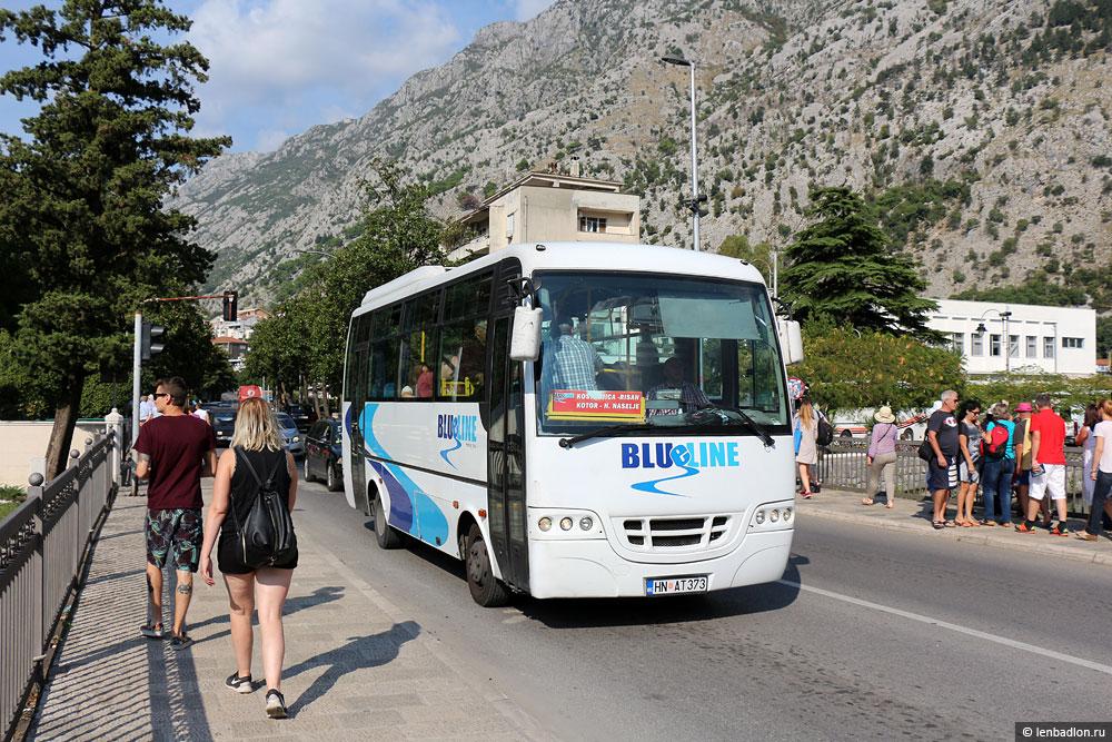 Фото автобуса Anadolu Isuzu Citibus в Черногории