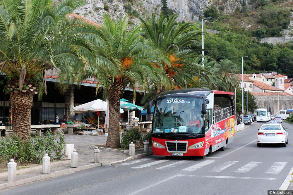 Экскурсионный автобус Ayats Platinum Open фото